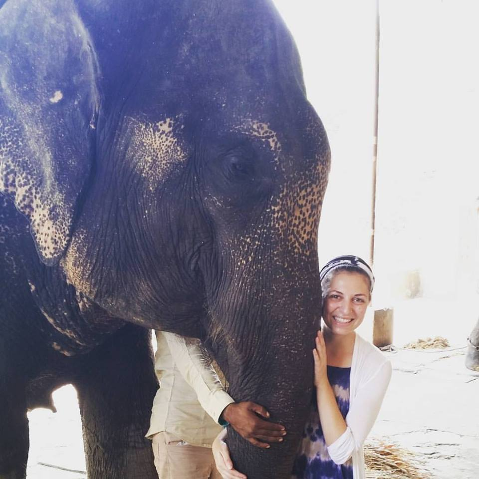 One of my most humbling life experiences, meeting elephants in Jaipur
