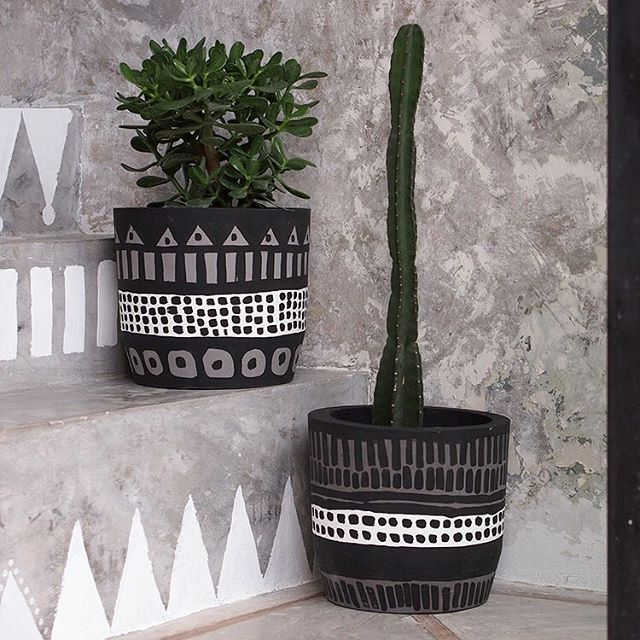 These pots now available at @slabinteriors - head to their showroom to purchase ✌️