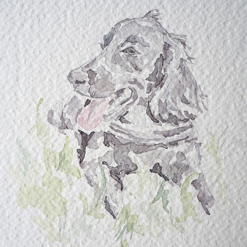 I paint all pet portraits with high quality and vegan friendly products. The paper has a lovely textured effect as you can see here.