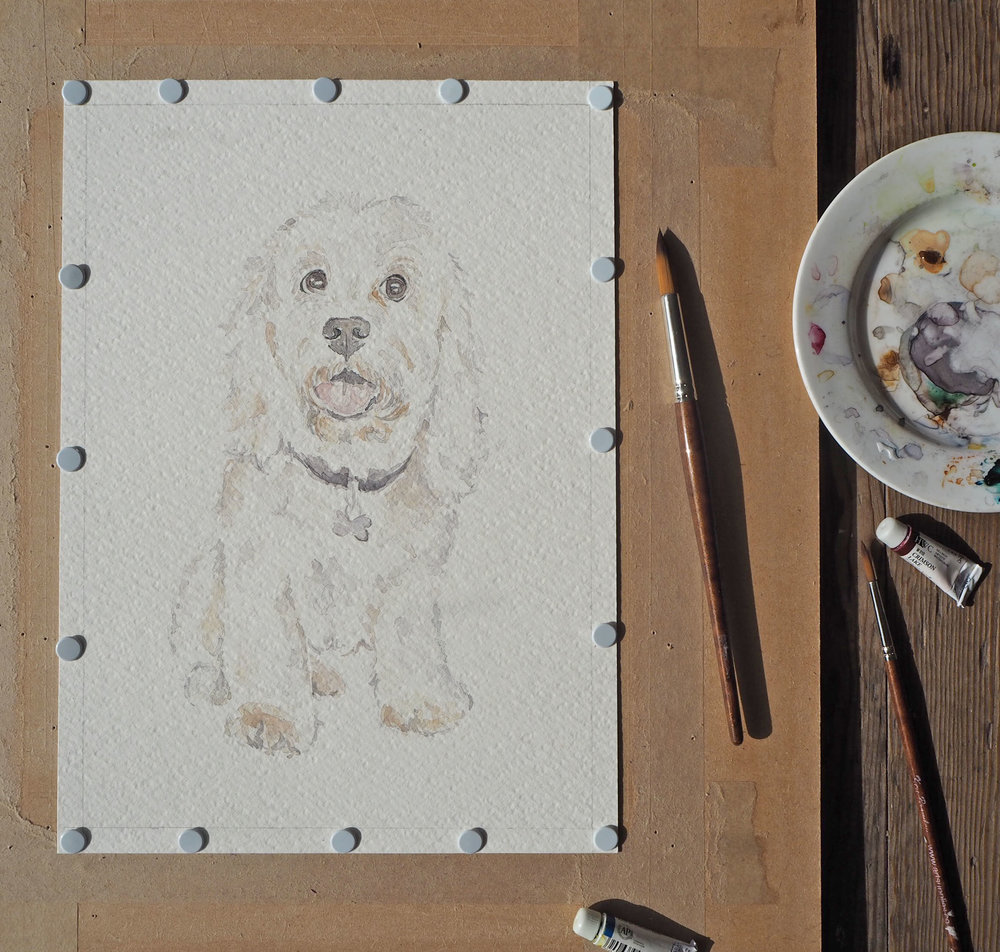 custom watercolour pet portrait