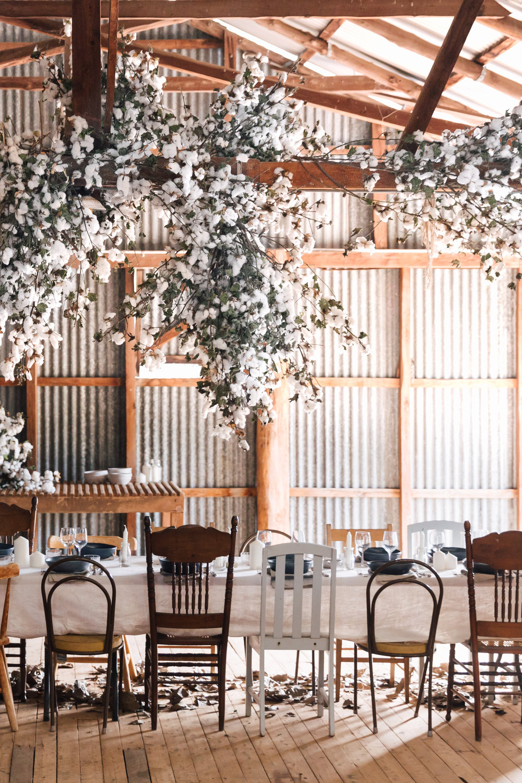 cotton wedding-4.jpg