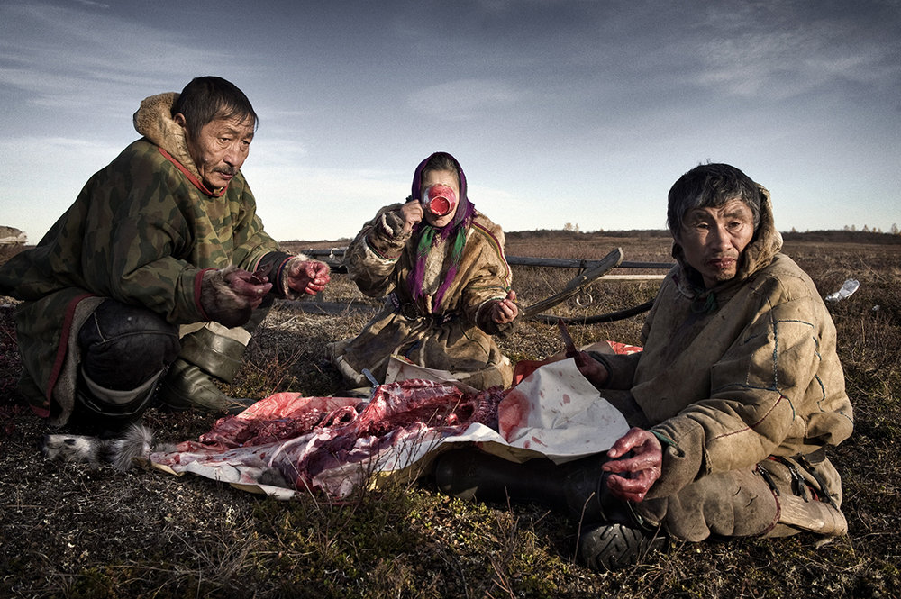 Russia, Yamal, October 2009,  The family slaughters reindeer every couple of weeks, eating it raw and with pasta.