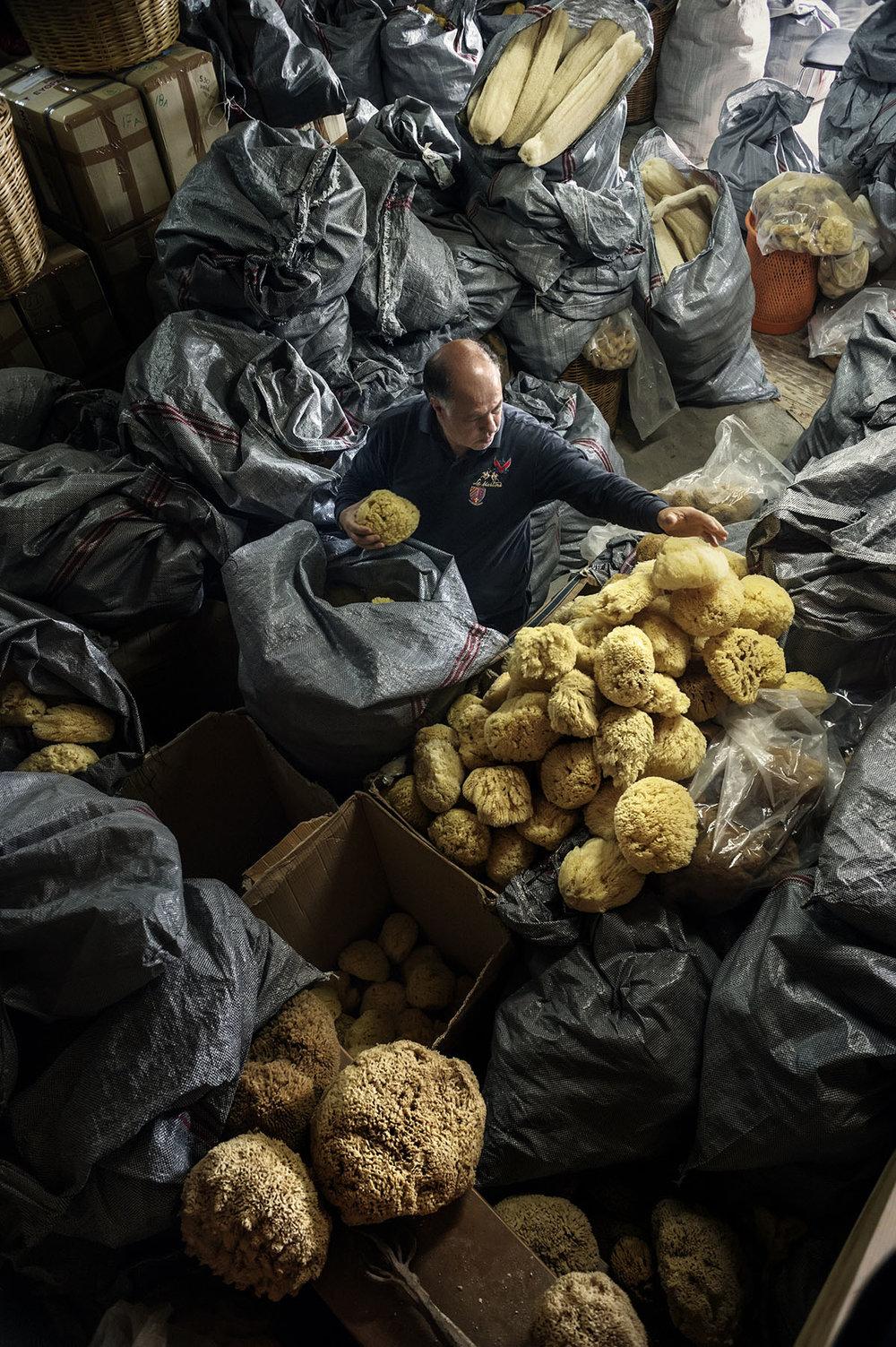 Greece, Kalymnos,April 2015, Sponges in the factory of Manolis Makryllos.