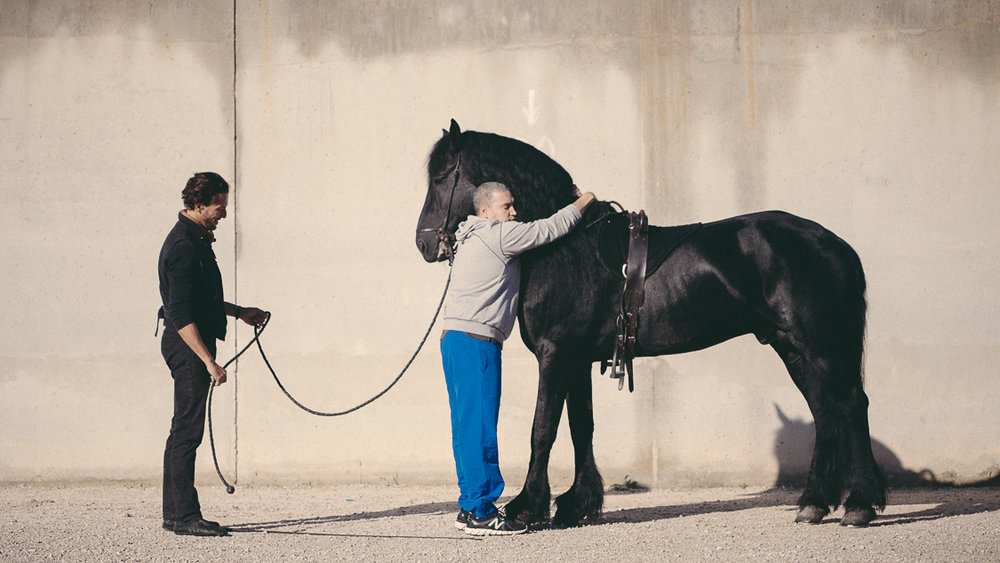 France, Marseille, 1 october 2014.One of the prisoners embraces Silence for several minutes.The rigidity of social relationships in prison does not leave room for emotion, so in contact with the horse he finds all the freedom of a relationship without judgment.Francesca Todde / NOOR