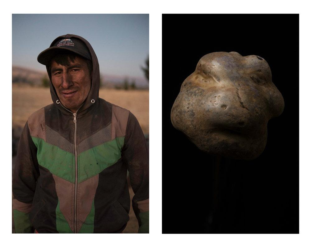 "Maxi, a farmer on the left. A native potato variety called ""kuchi pelo"", on the right."