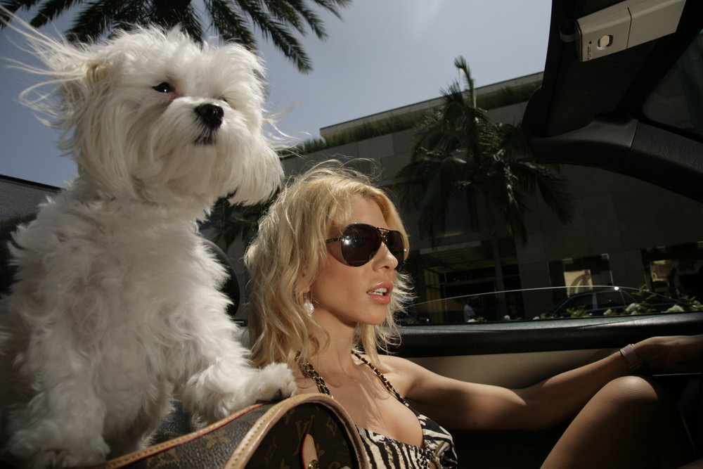 Life with internet superstar Marina Orlova, of hotforwords.com. At home in Beverly Hills shooting a video, out shopping, in front of the Lakers stadium,.