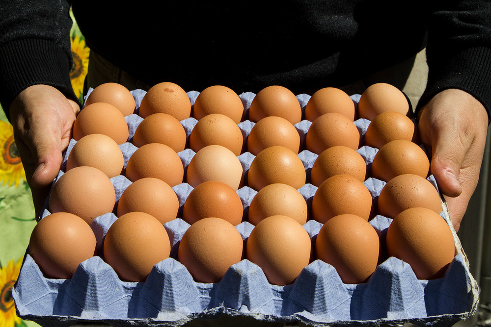deane-barton-free-range-eggs-minehead-farmers-market.jpg