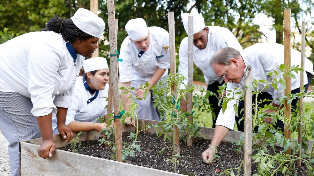JWU culinary students stand around garden