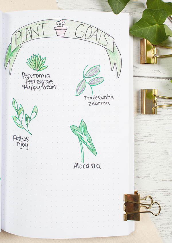 Sketch a doodle of your top wish list items! PS. Yes, that's glittery purple gel pen on the Zebrina. What else could we possibly use for its shimmery leaves?