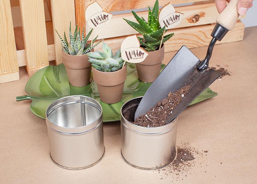 DIY Tea Tins 3.jpg