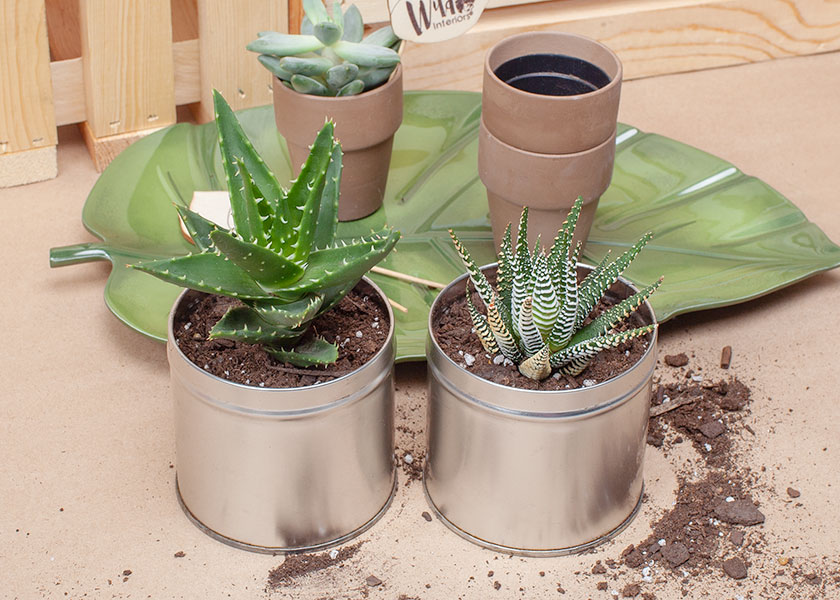 DIY Tea Tins 4.jpg