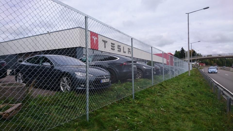 Gjerde+Tesla.jpg