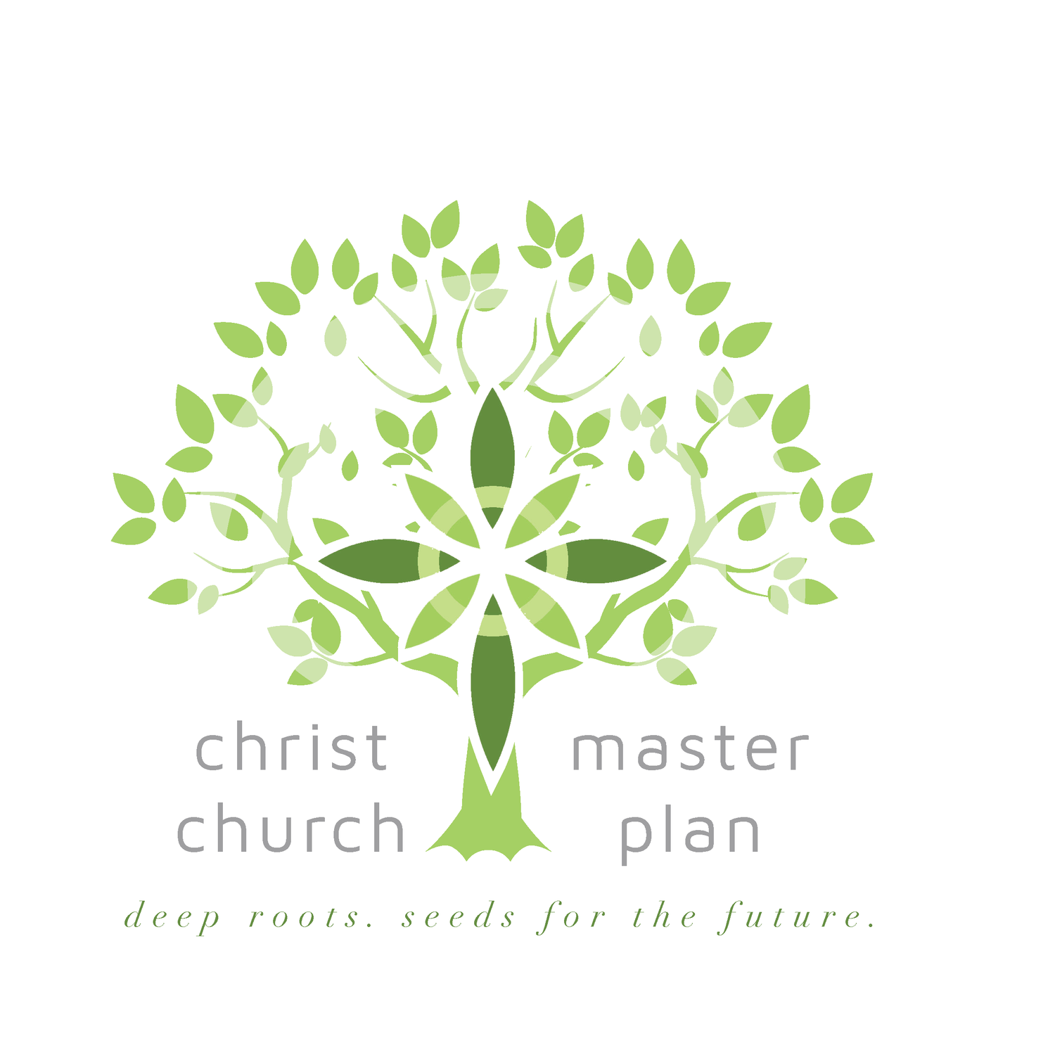 Christ Church Frederica Master Plan