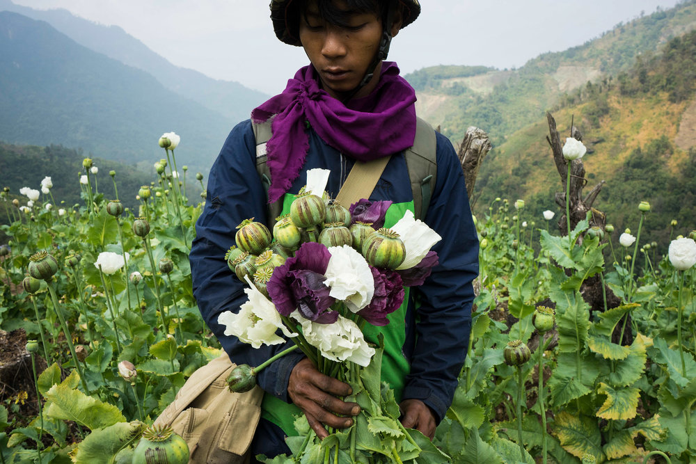 the_opium_war_kachin_myanmar_hkun_lat01.jpg