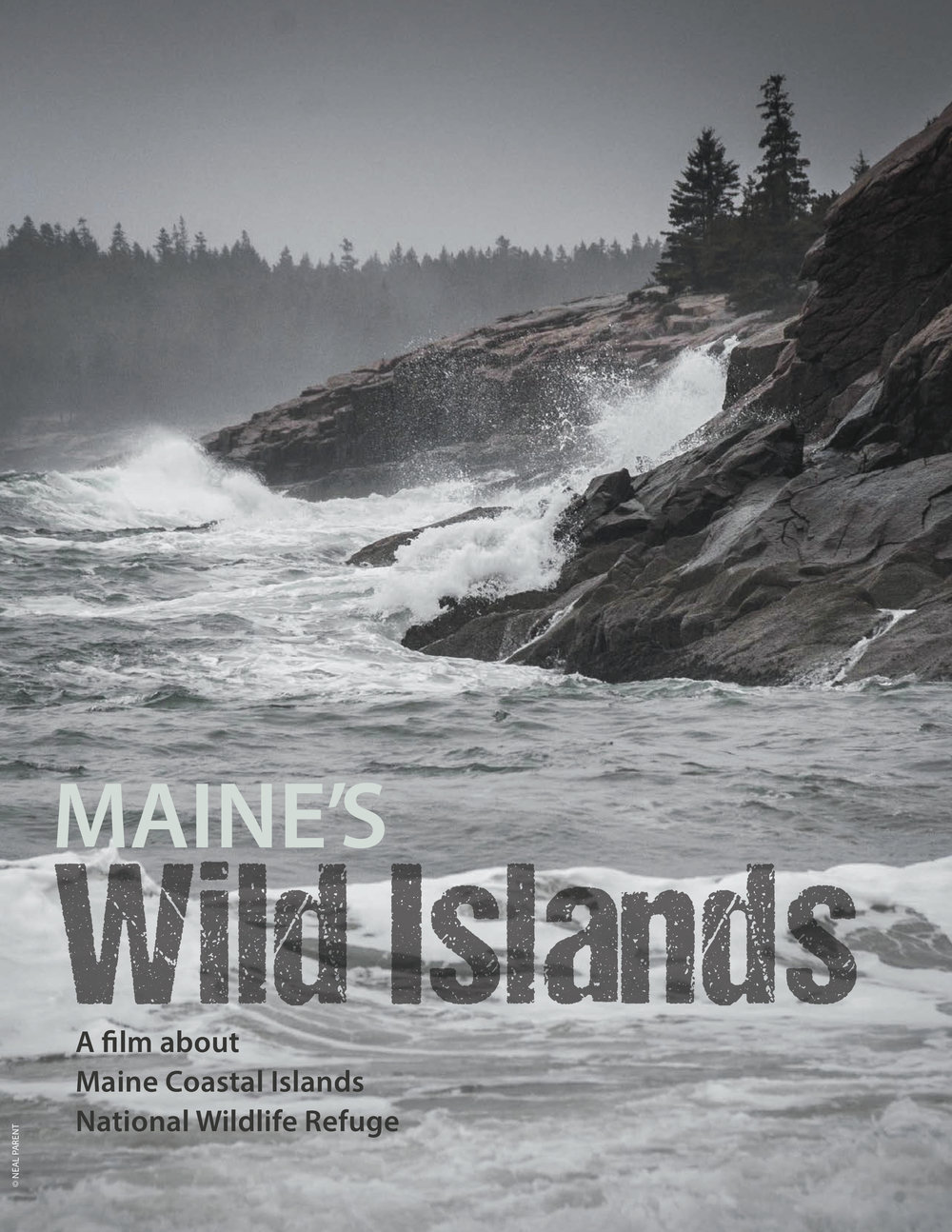Maine's Wild Islands Lookbook_final_bleeds 1.jpg