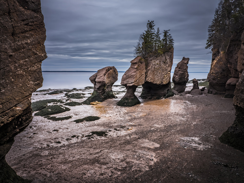 The beautiful Hopewell Rocks at low tide. Since this is before the season opens, access to the tidal flats is strictly against the law – as well, one is risking injury if one tries to descend. Still, it did not stop many of the more youthful and agile folks visiting!