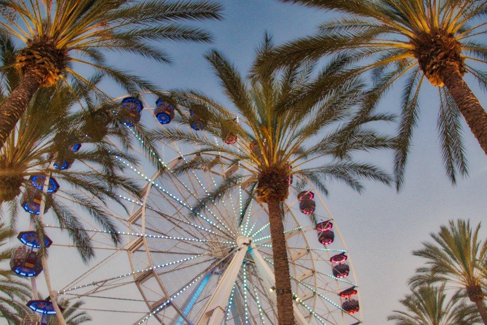 Irvine Spectrum Palms 2.jpeg