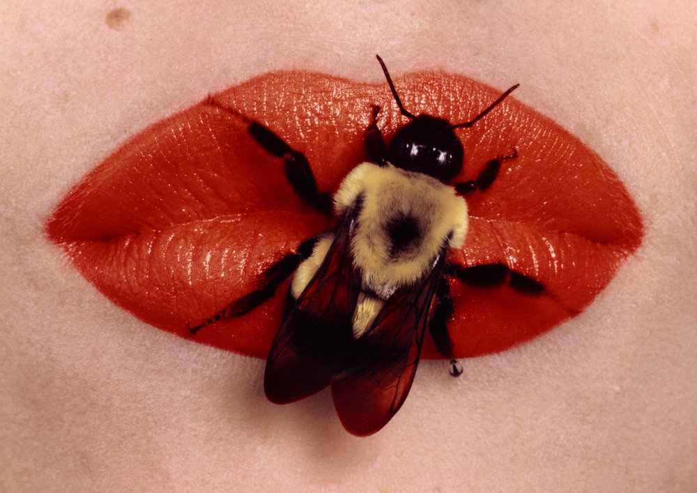 Bee on Lips , New York, 1995 Dye transfer print © Condé Nast