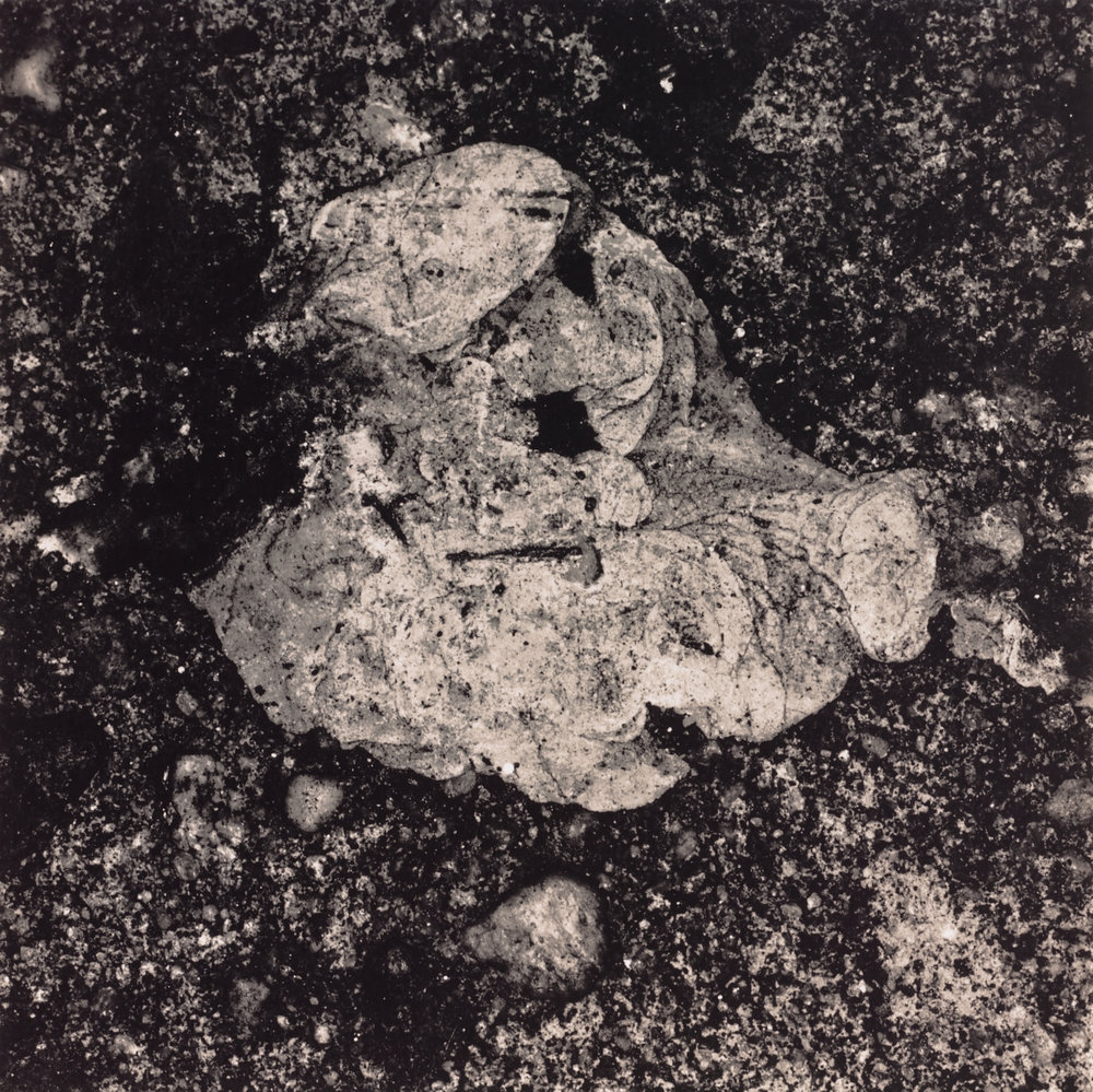 Underfoot XXIV , New York, 2000 Gelatin silver print © The Irving Penn Foundation