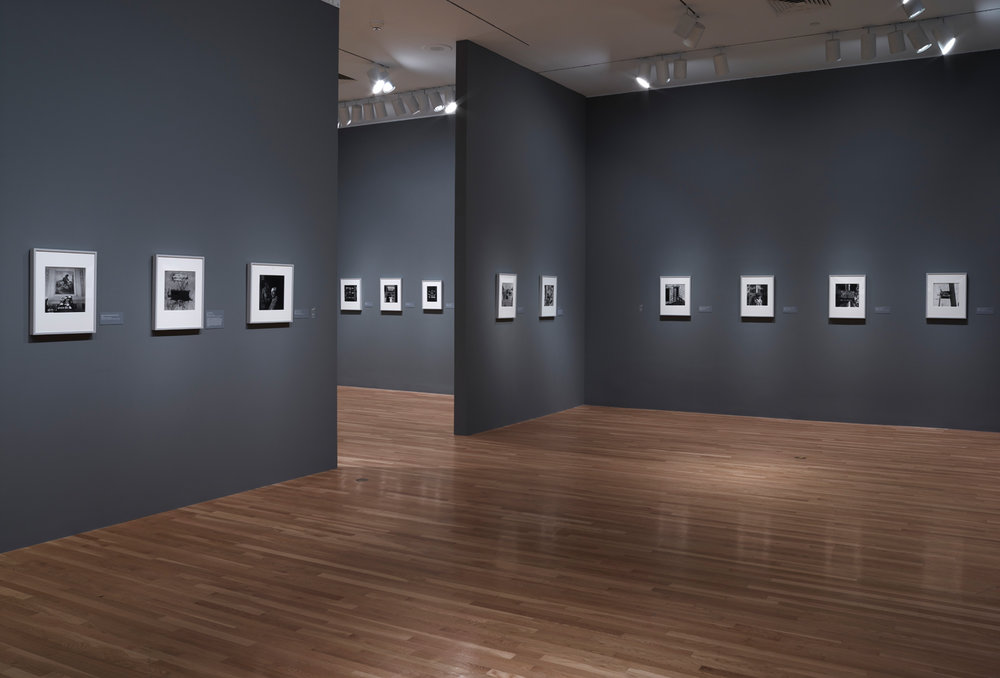 Irving_Penn_Installation_2016_013.jpg
