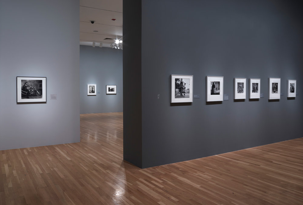 Irving_Penn_Installation_2016_017.jpg