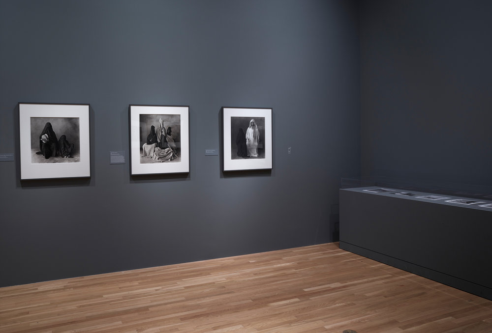 Irving_Penn_Installation_2016_054.jpg