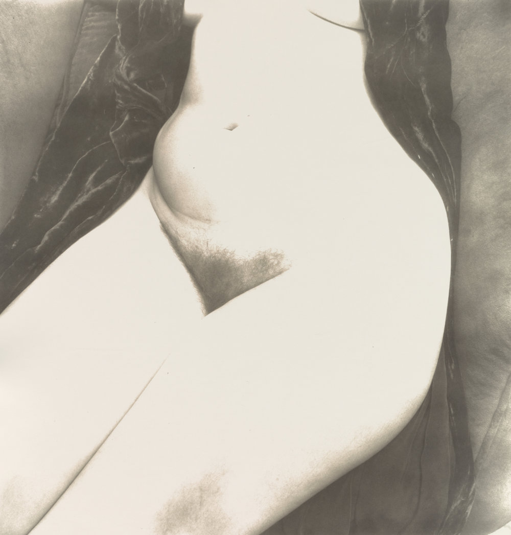 Nude No. 131 , New York, 1949–50 Gelatin silver print © The Irving Penn Foundation