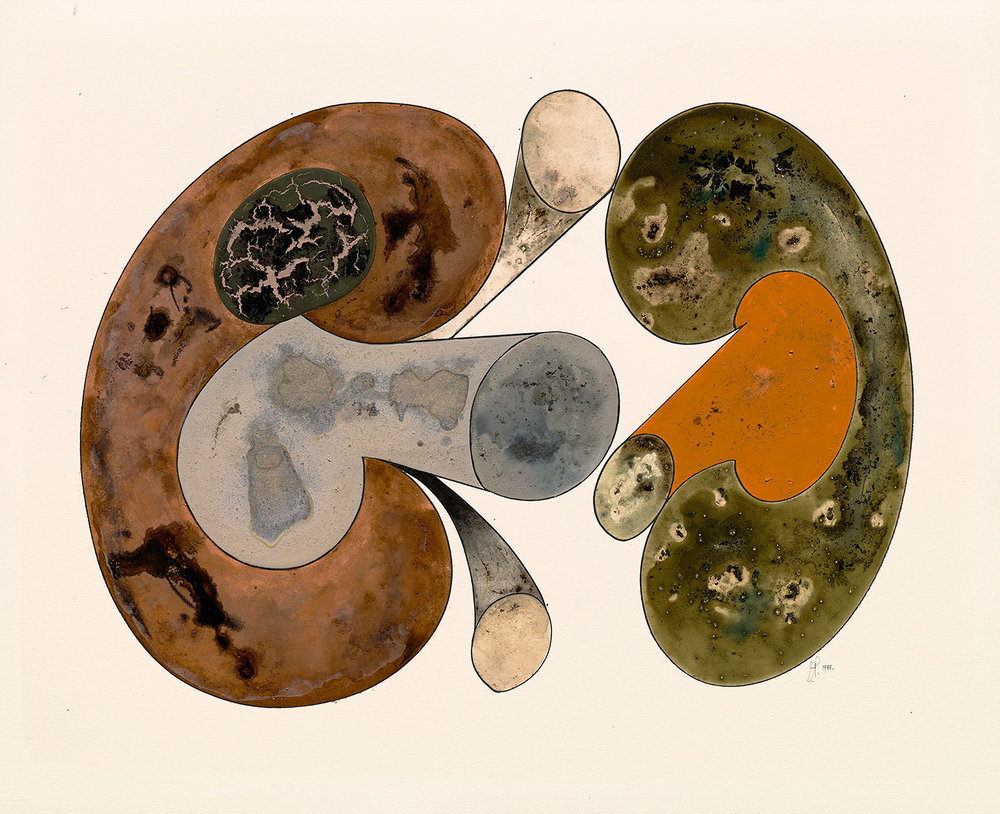 Irving Penn,  Aging Mushrooms , 1988. IInk, watercolor, and dry pigment with gum arabic over platinum-palladium print on paper.  ©  The Irving Penn Foundation