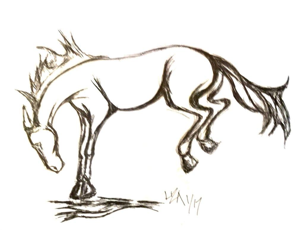 bucking horse pen ink 350