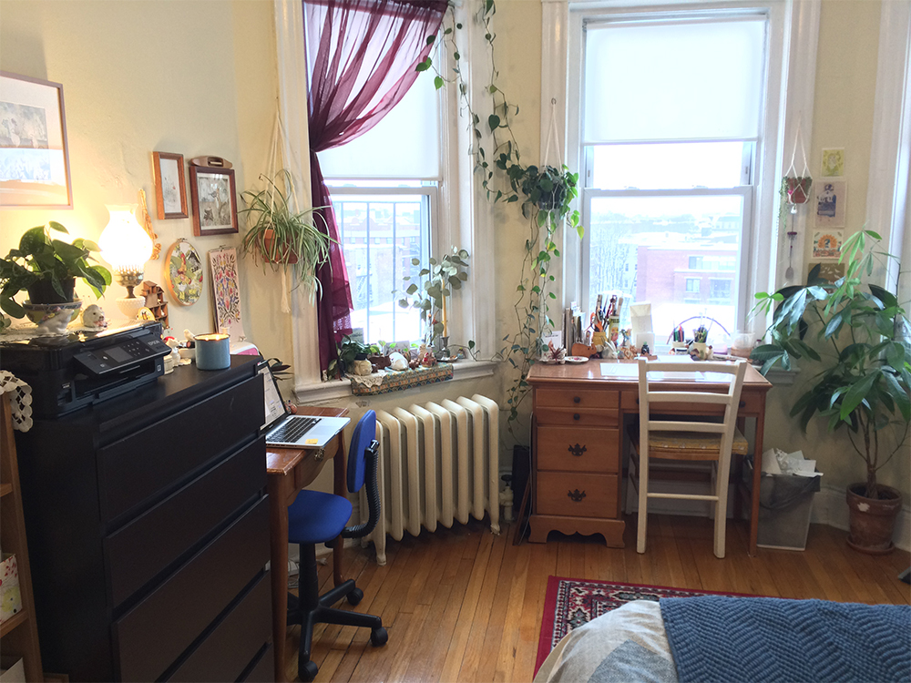 Lindsay's plant filled studio