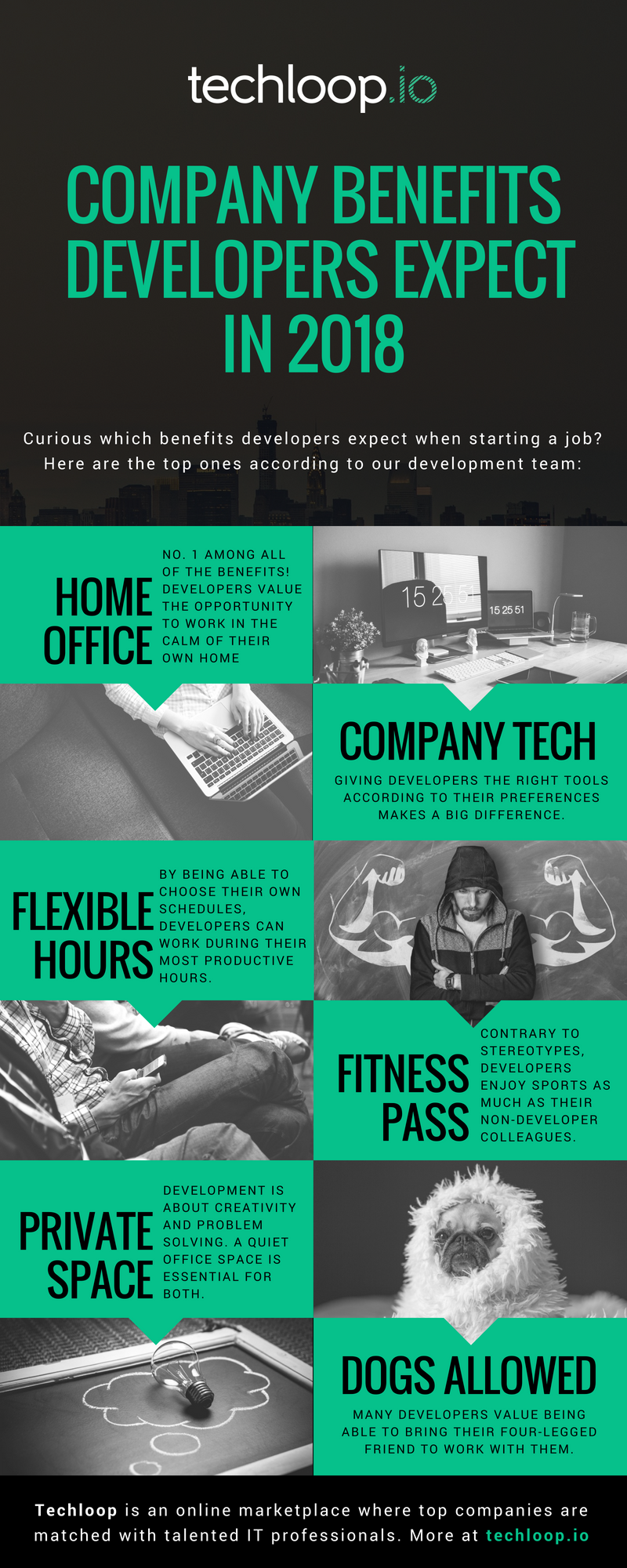 Company benefits for developers infographic
