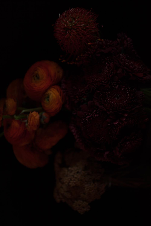 DROZDZIK_FW2018_STILLS_FLOWERS_MG_8505_photocopyrightmariliadestot.jpg