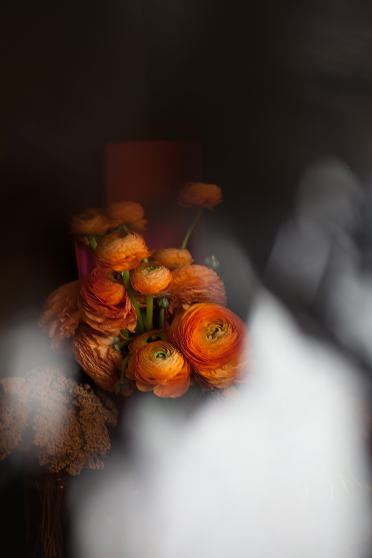 DROZDZIK_FW2018_STILLS_FLOWERS_MG_8532_photocopyrightmariliadestot.jpg