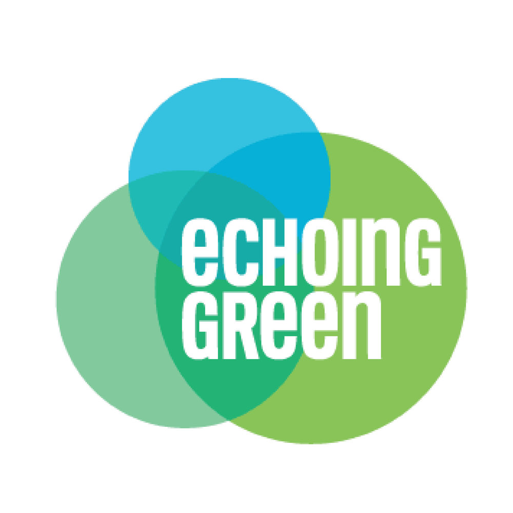 Echoing Green logo.jpg
