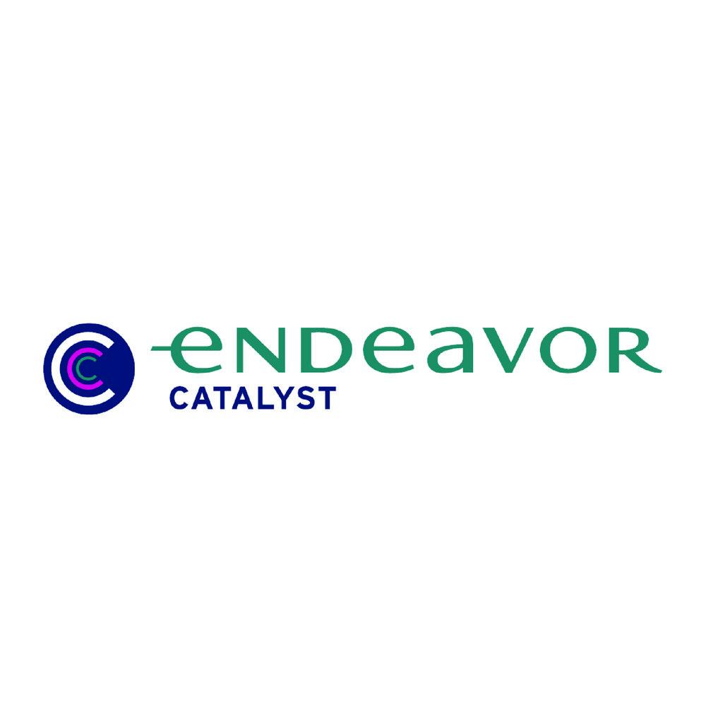 endeavor-01.jpg