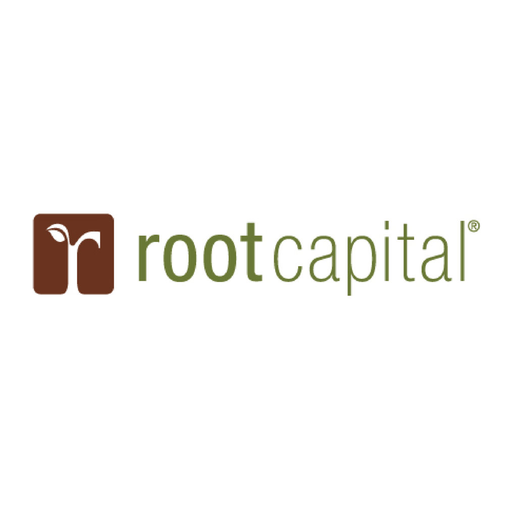 rootcapital-01.jpg