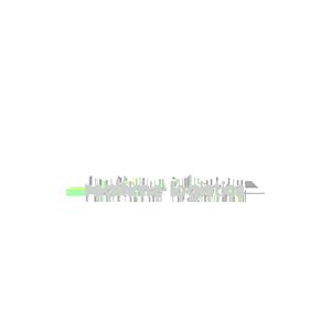 Saloodo.png