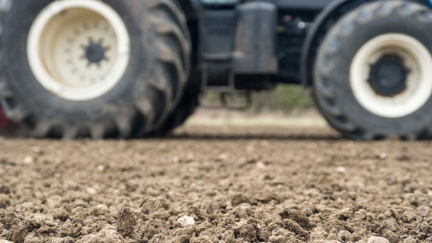Gove pledges action to protect soils
