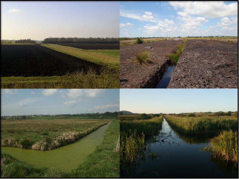 Lowland peatland systems in England & Wales – Evaluating greenhouse gas fluxes and carbon balances     Final report to Defra, CEH  2017   Lowland peatlands represent one of the most carbon-rich ecosystems in the UK & are now amongst the largest sources of greenhouse gas (GHG) emissions.