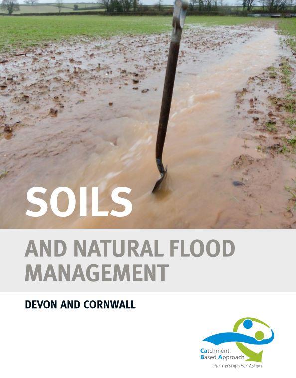 Natural flood management.JPG