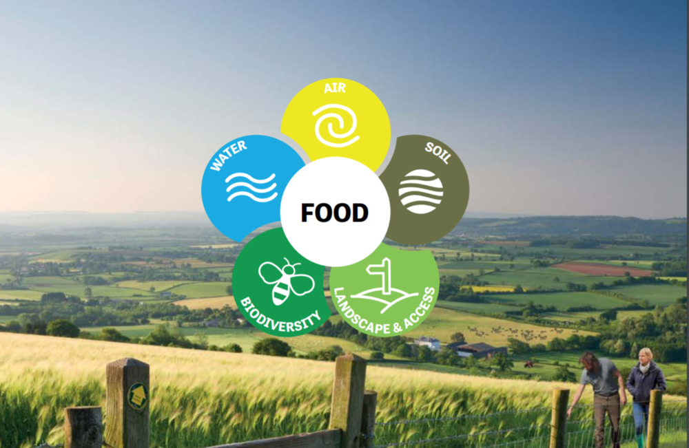 United by our environment, our food, our future    National Farmers' Union  December 2018   With agriculture occupying over 70% of UK landmass, farm businesses play an irreplaceable role in looking after our cherished natural environment. This report looks at five key areas of the environment where farmers can, and do, play a key role in tackling the challenges we face – landscape, biodiversity, soil, water and air.