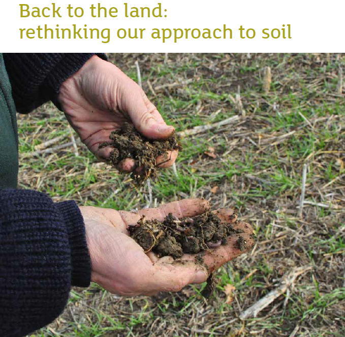 Back to the land: Rethinking our approach to soil    Campaign to Protect Rural England  November 2018   This is the third paper of our Food and Farming Foresight Series. We explore why soils are important and their main functions, and look at the key threats they face, from the way they are managed to their loss to farming when developed. The report also analyses why soils must be better protected in the future.