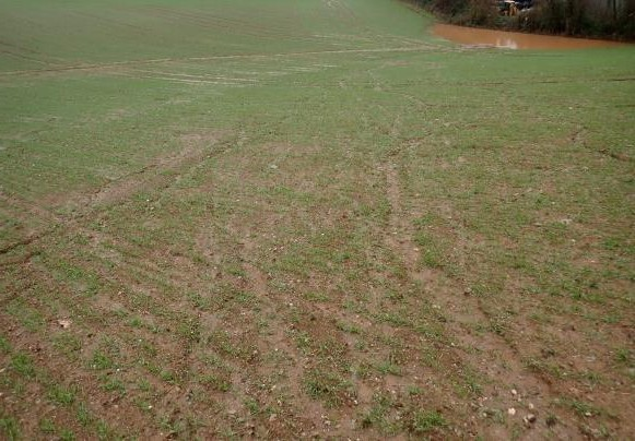 Unstable soils - The SW has land that is prone to slumping on lighter soils and where organic matter has been run down. This can lead to reduced porosity and muddy runoff. In some cases the problem can cover large areas of land and lead to flooding. The solution is to avoid fine seedbeds where possible, undertake early drilling, and develop a rotation and strategy to build up organic matter.