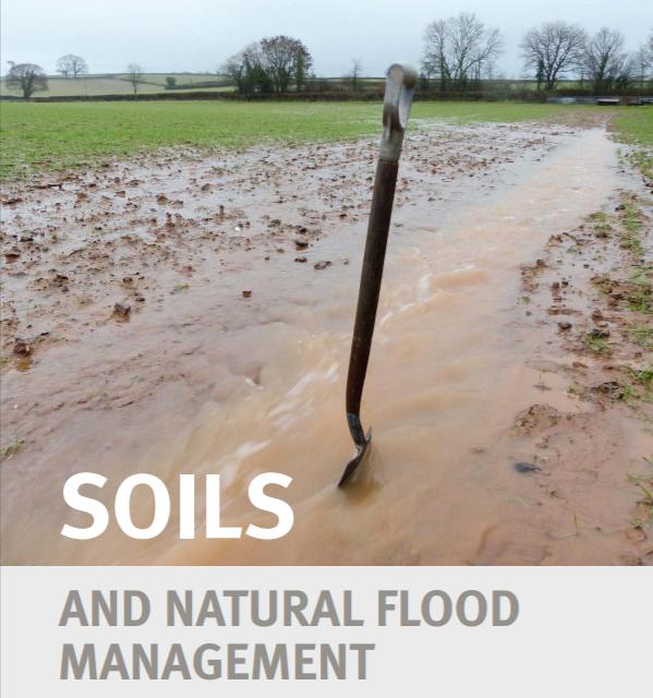 Soils and Natural Flood Management: Devon & Cornwall   East Devon Catchment Partnership, August 2017