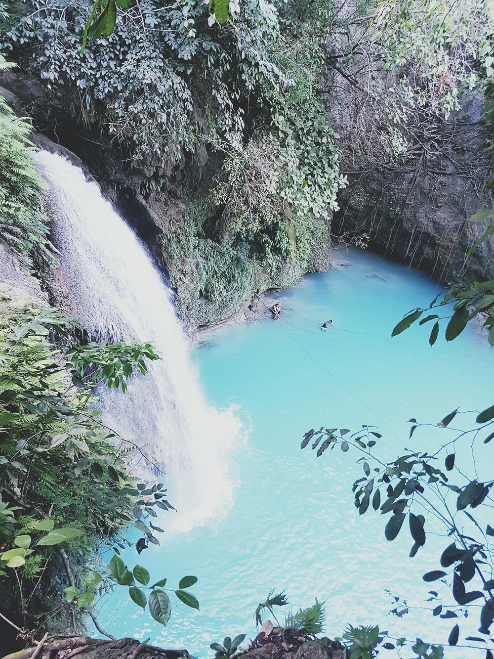 The Famous Kawasan Falls in Cebu is a must see for all kinds of travellers.