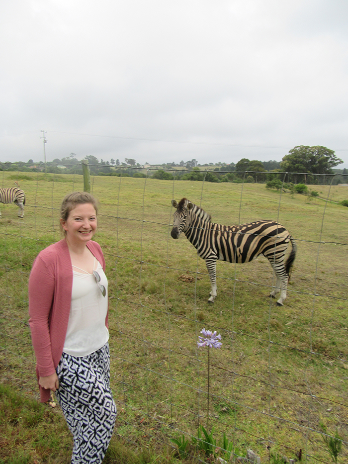 Making friends with Zebras in South Africa