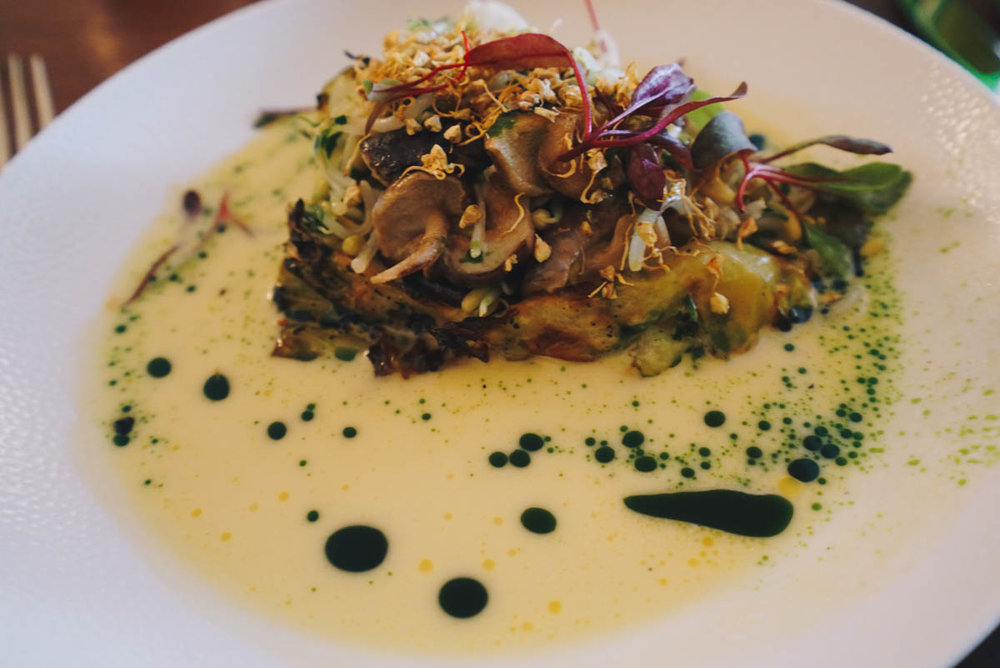 Suspend disbelief at Leib Resto ja Aed in Tallinn, Estonia and order this roasted spring cabbage with Estonian shiitake mushrooms and cabbage broth.
