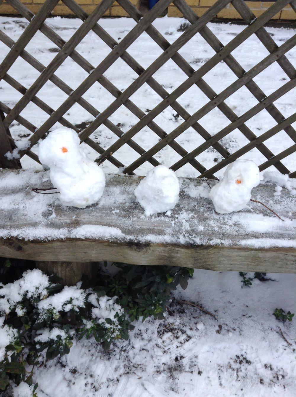Snow Day - 1.2 (47).JPG