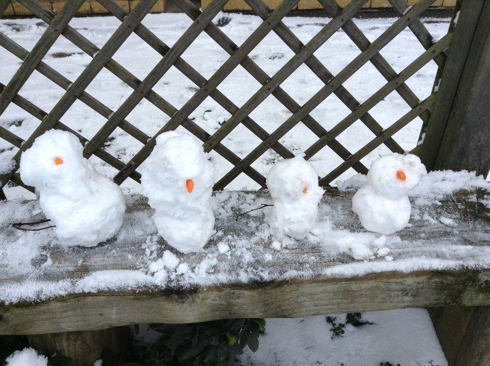 Snow Day - 1.2 (48).JPG