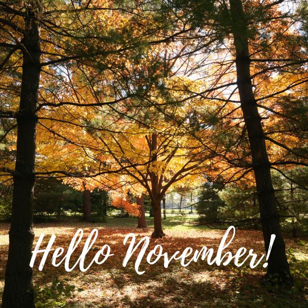 hello november keep your krown